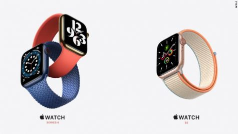 Apple Watch Series 6 & SE