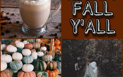 Top 5 Things to Do Over Fall Break!