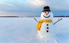 Snow Day Fun !